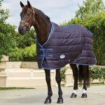 Indications Of A Tailored Horse Rug